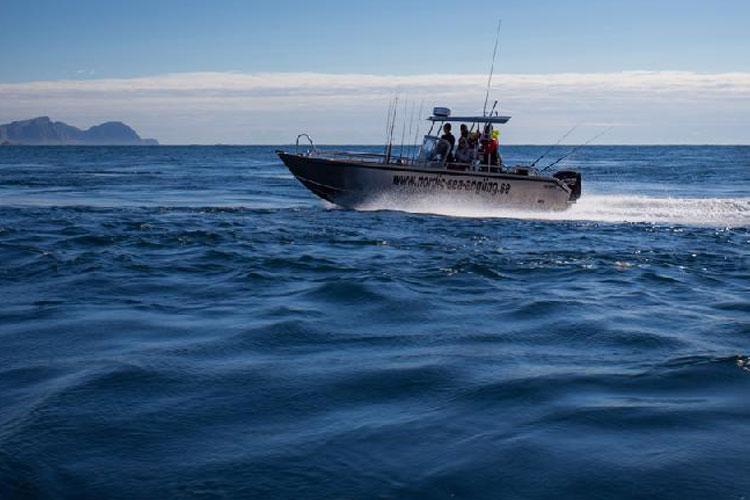 Lofoten Islands Best Destination Norway Report