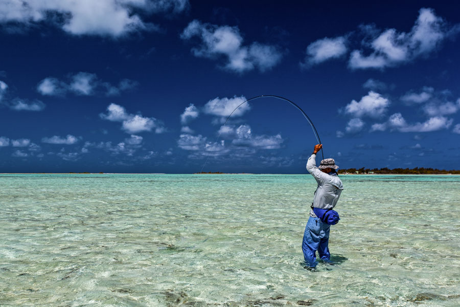 Fly Fishing Mauritius