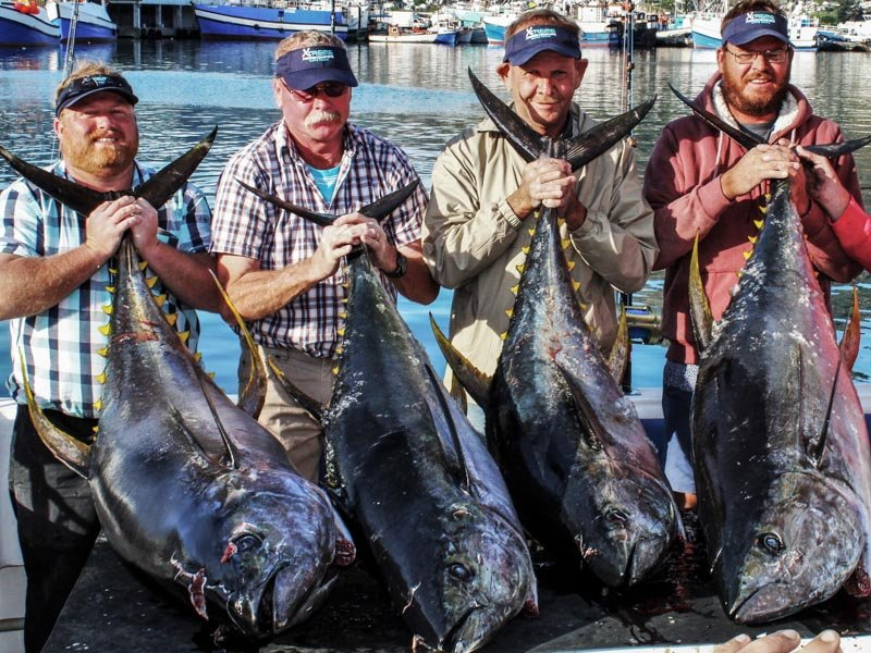 Big game fishing south africa sportquest holidays for Tuna fishing games