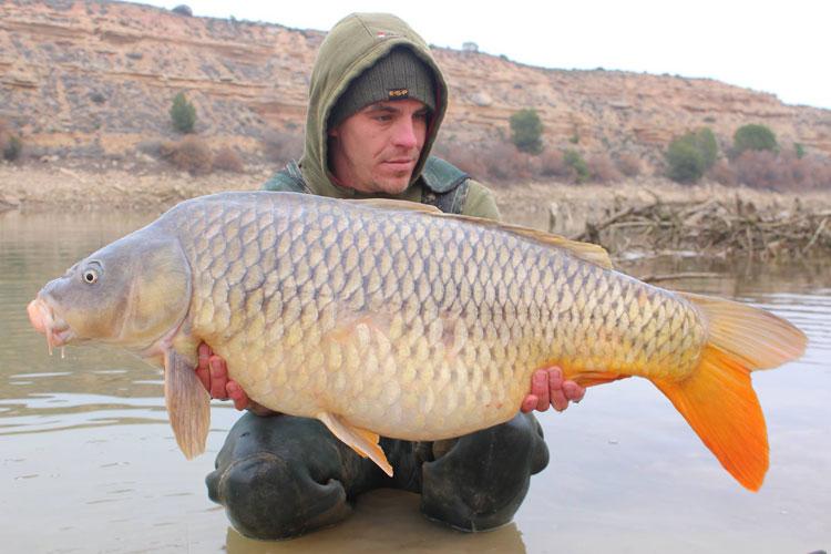 Winter Carp Fishing Anyone?