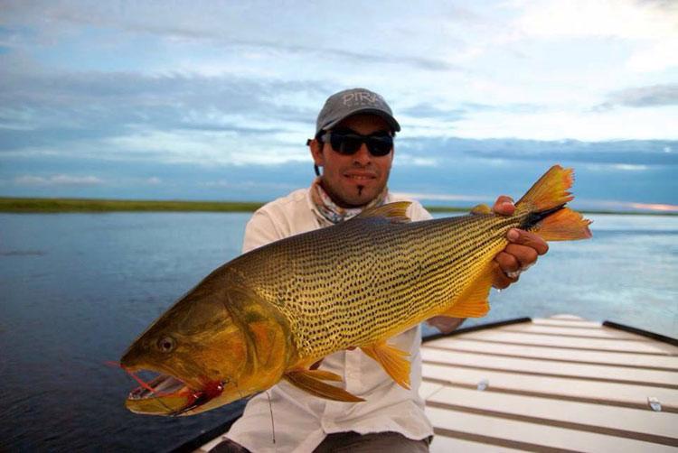 Fishing Report Pirá Lodge Jan 7 – 31 2017