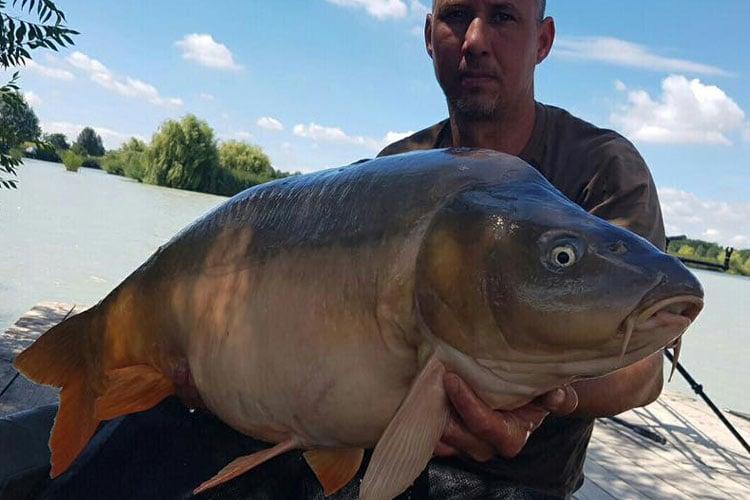 Early Season Hungary Island Lake Carp Report | Sportquest