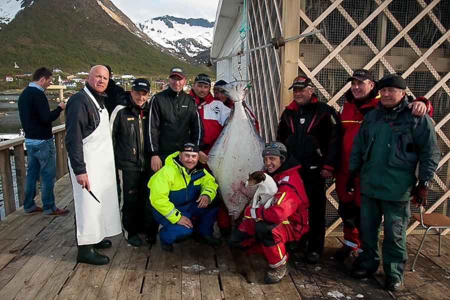 Cod & Halibut Fishing Norway