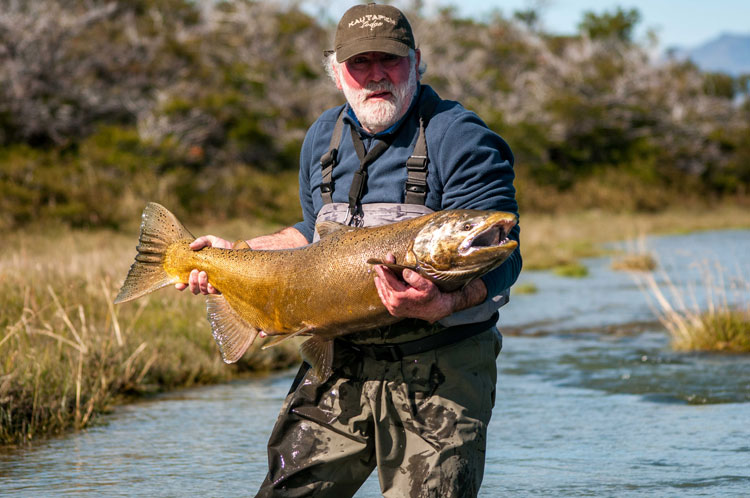 Glacier King Salmon Report Week Two
