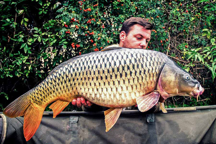 Carp Fishing Hungary