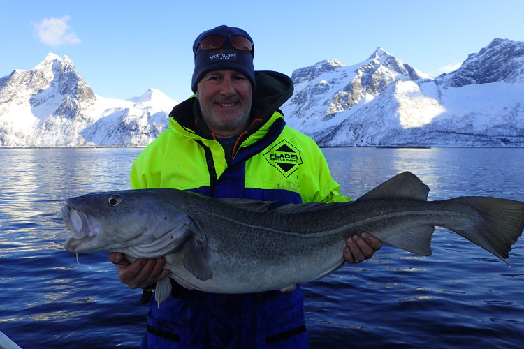 Hosted Mefjord Norway Sea Fishing Review