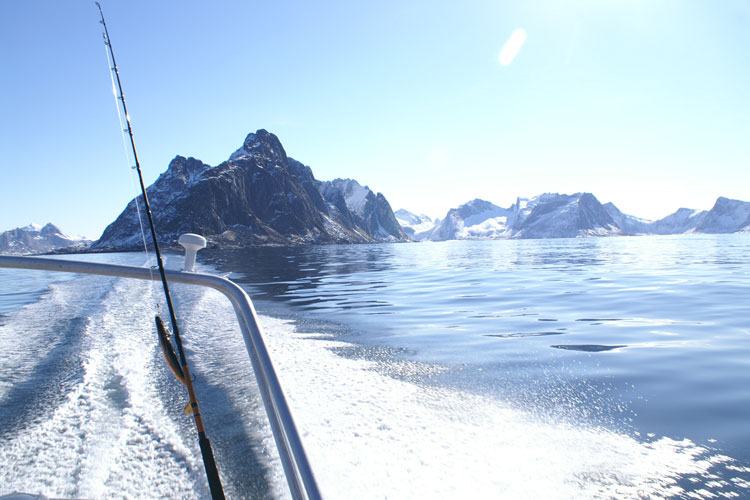 John & Steve's Report From Mefjord North Norway