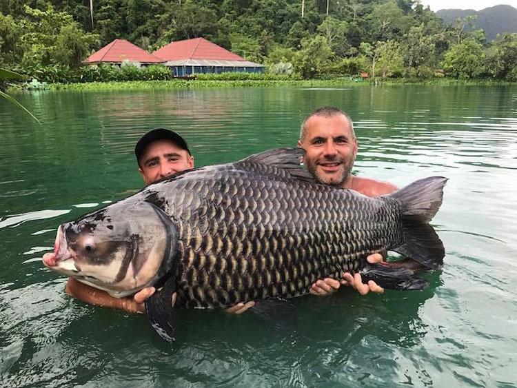 Gillham's Fishing Resorts