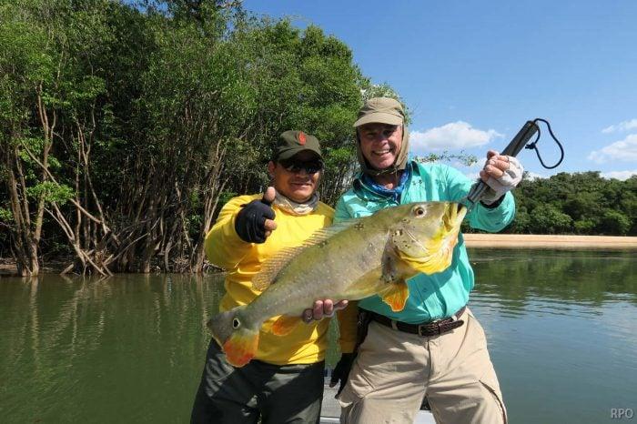 Peacock Bass Brazil Mid Week Report August 5th