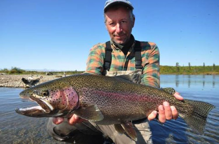 Alaskan Rainbow Trout with ATA Lodge