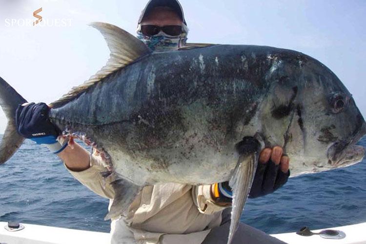 GT fishing Andaman Islands
