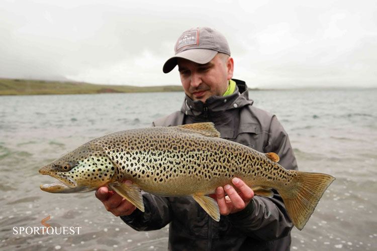 Best Brow Trout Fishing in the world
