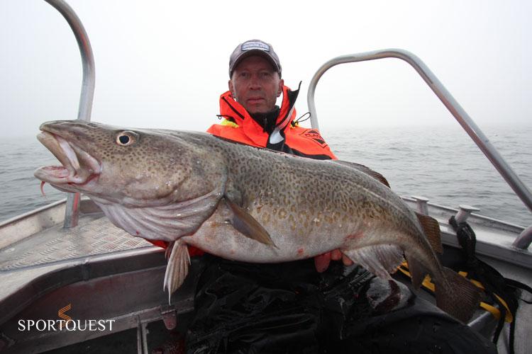 Halibut fishing Havoysund Norway