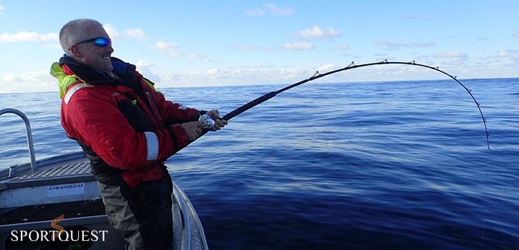 Sea fishing Norway