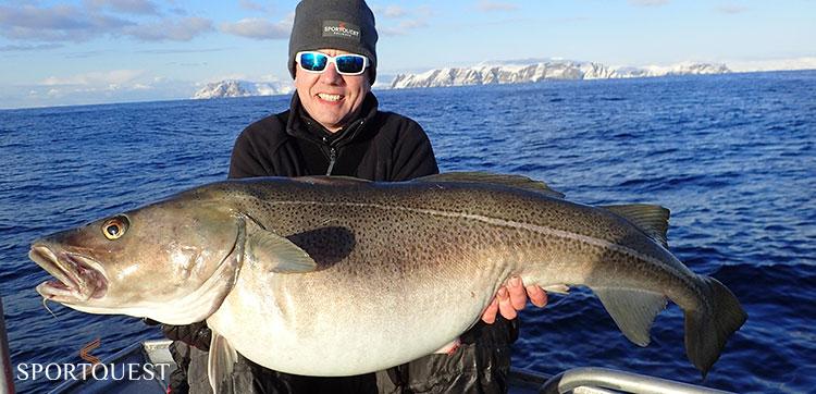 Cod fishing Soroya