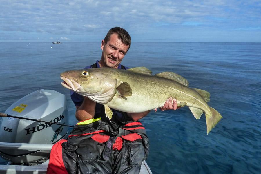 Giant Halibut Fishing