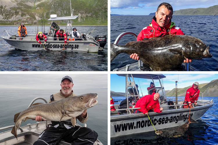 Havoysund hosted Halibut fishing