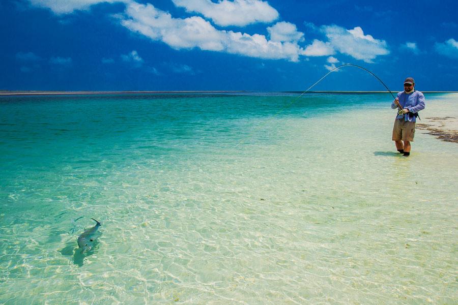 Fly Fishing Cosmoledo Atoll   Seychelles Fishing
