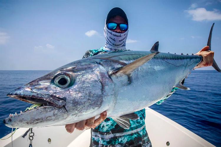 Large Dogtooth Tuna