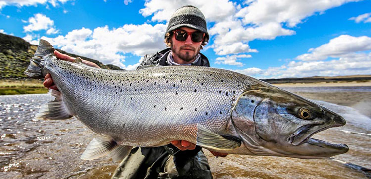 Sea Trout Fly Fishing