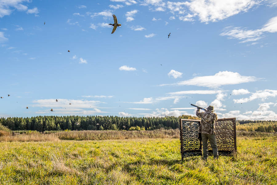 Wing Shooting Stora Sundby