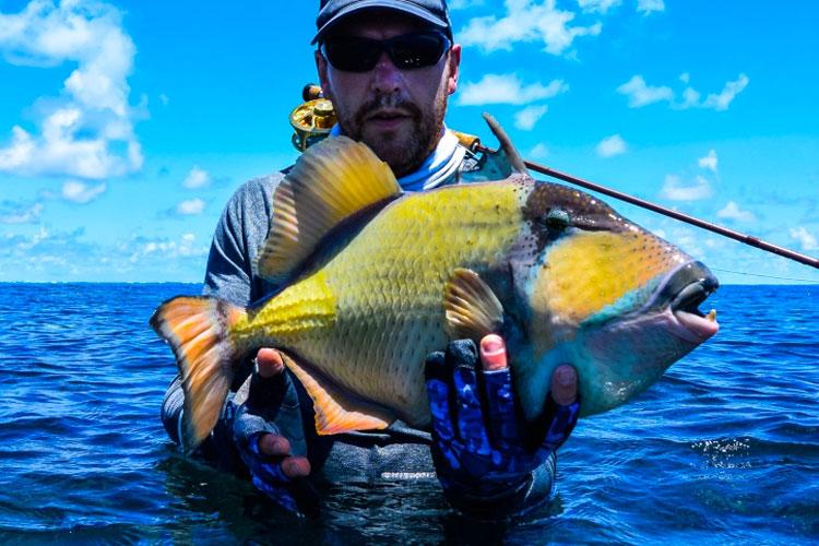 Triggerfish Fishing Seychelles