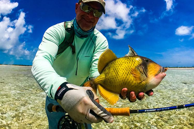 Triggerfish fishing Farquhar