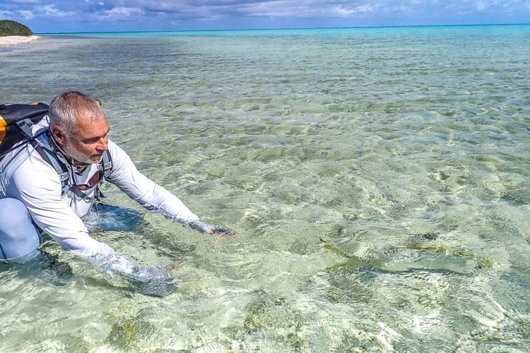 Bonefishing Seychelles