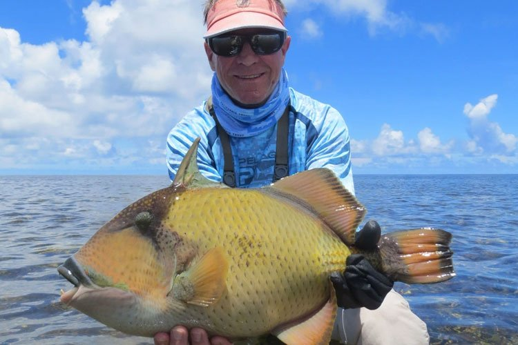 Triggerfish fishing Seychelles