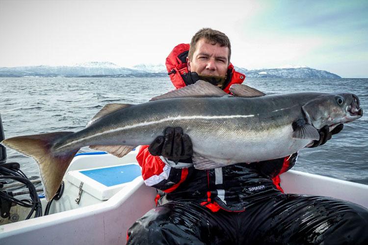COD & COALFISH FISHING SANDBAKKEN