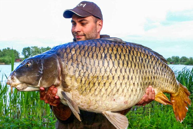 Paradise Lake Carp Fishing Hungary