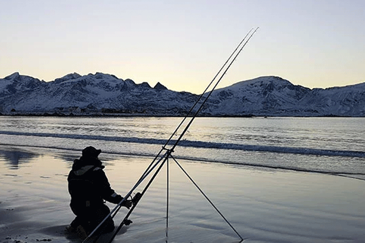 Lofoten islands shore fishing