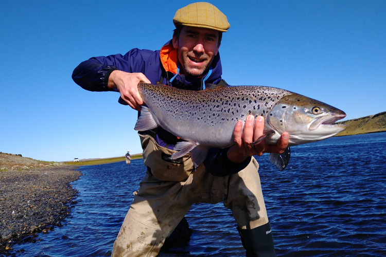 Spotty sea trout