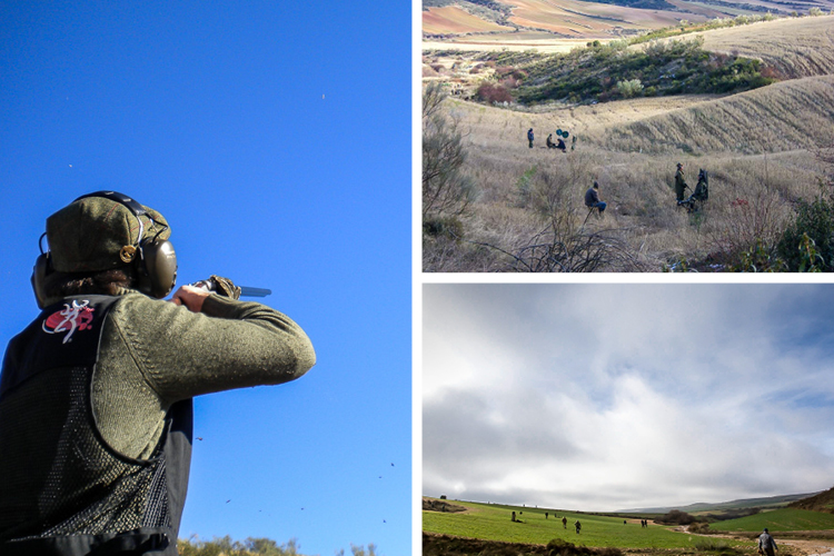 4 Great Landscapes From Spain