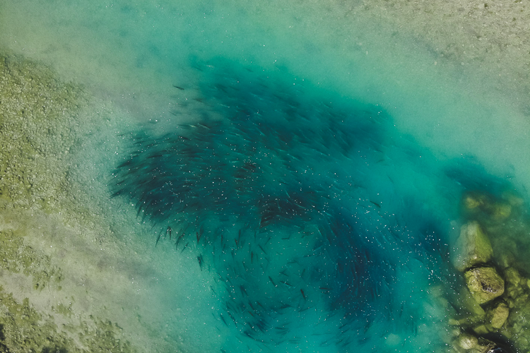 Drone shot of a Char Pool