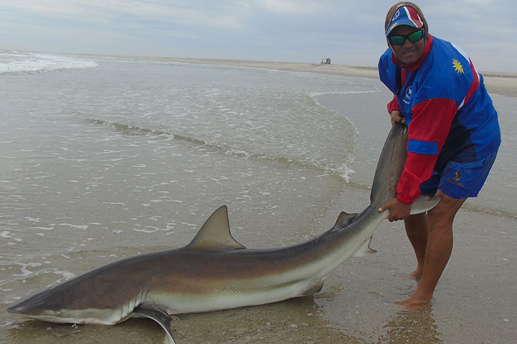 Guide holding large shark on the shpre
