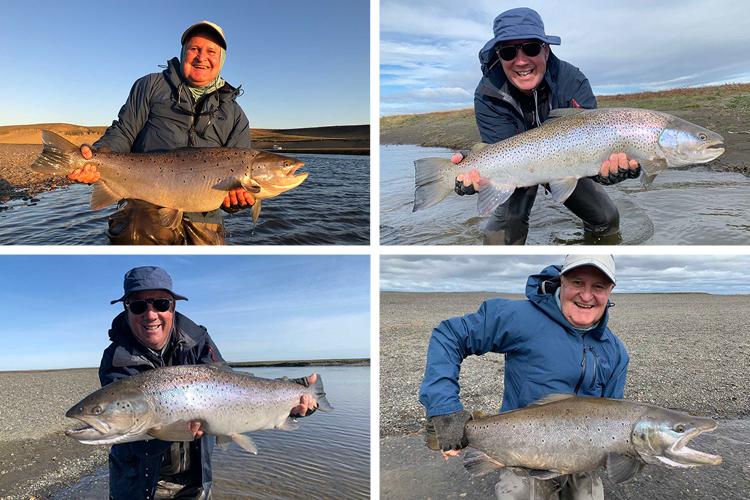 4 Great Fish From Villa Maria