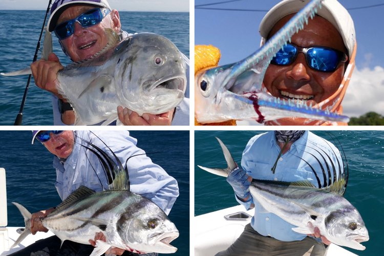 Roosterfish and jacks in costa rica