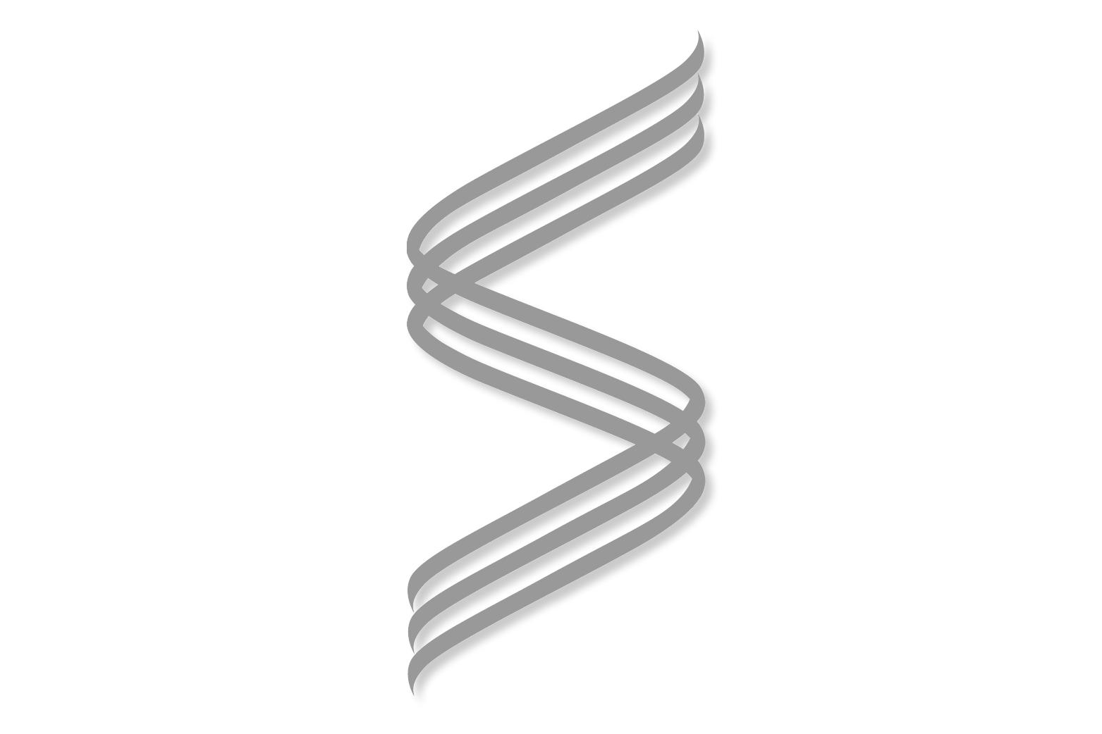 Sportquest Spirit logo