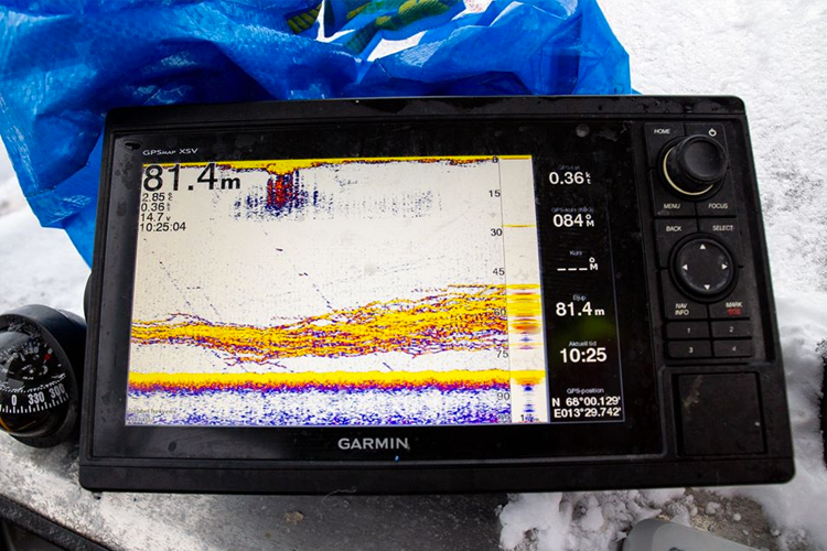Lots Of Fish On The Sonar