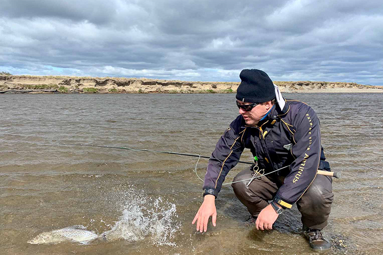 Releasing A Sea Trout Back To The river