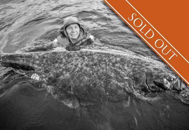 HALIBUT & PLAICE FISHING   LOFOTEN   NORTH NORWAY