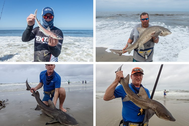 4 Great Fish From Namibia