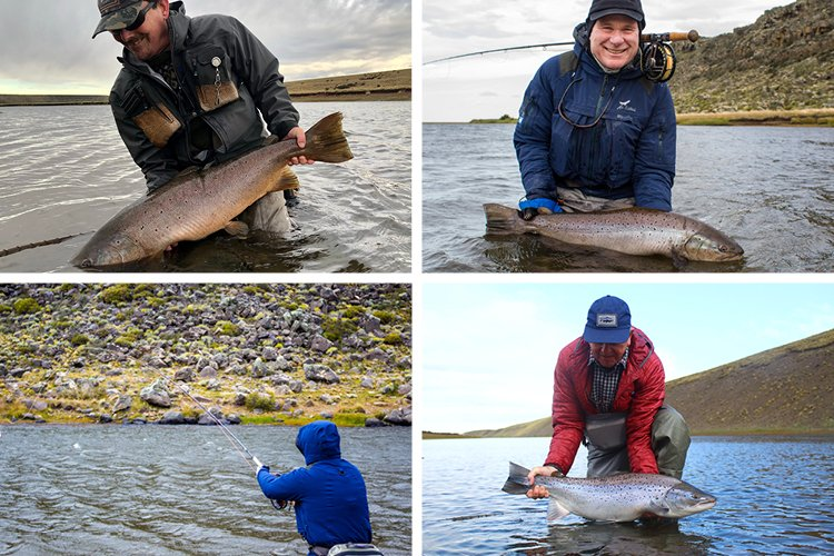 Angler casting and catching trout