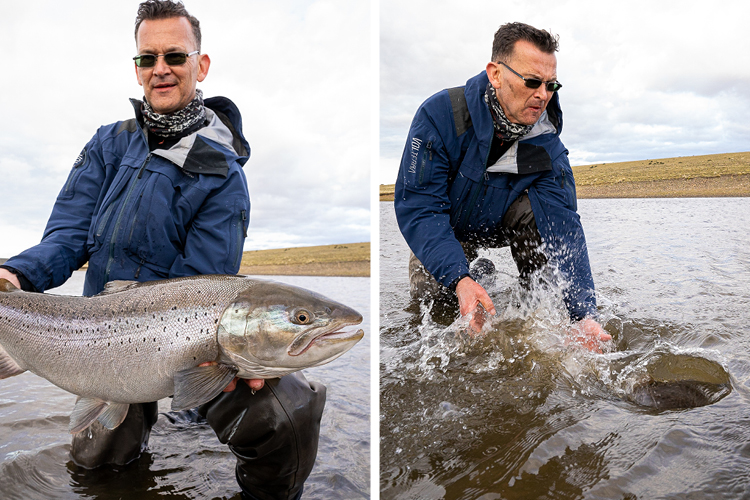 Large Sea trout being released