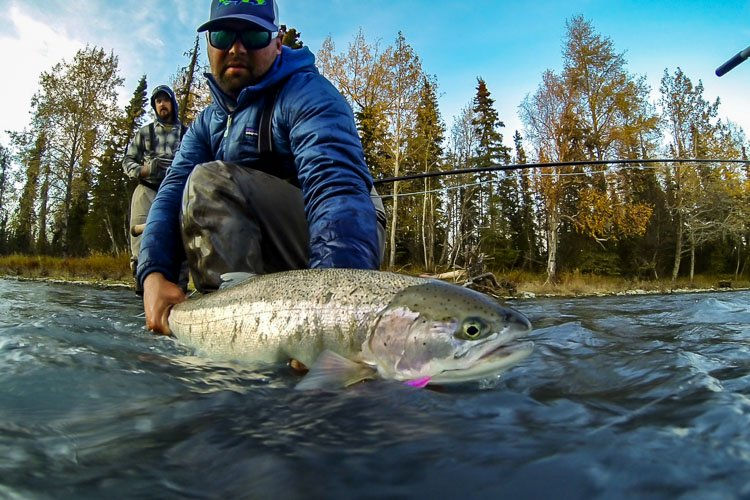 Steelhead trout alaska