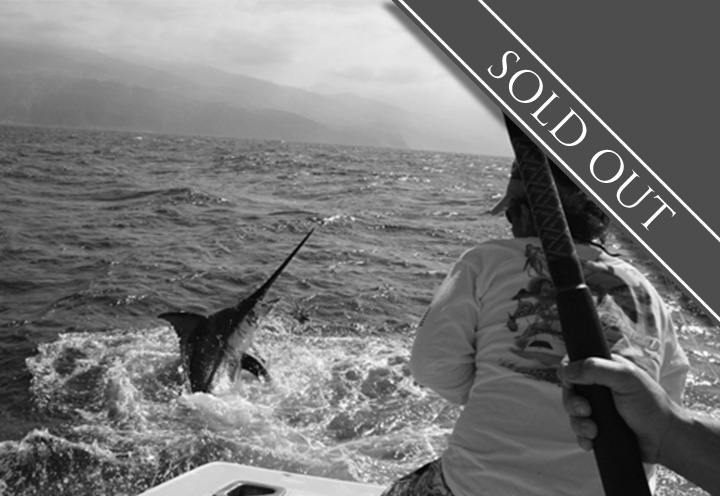 BLUE MARLIN BIG GAME FISHING MADEIRA