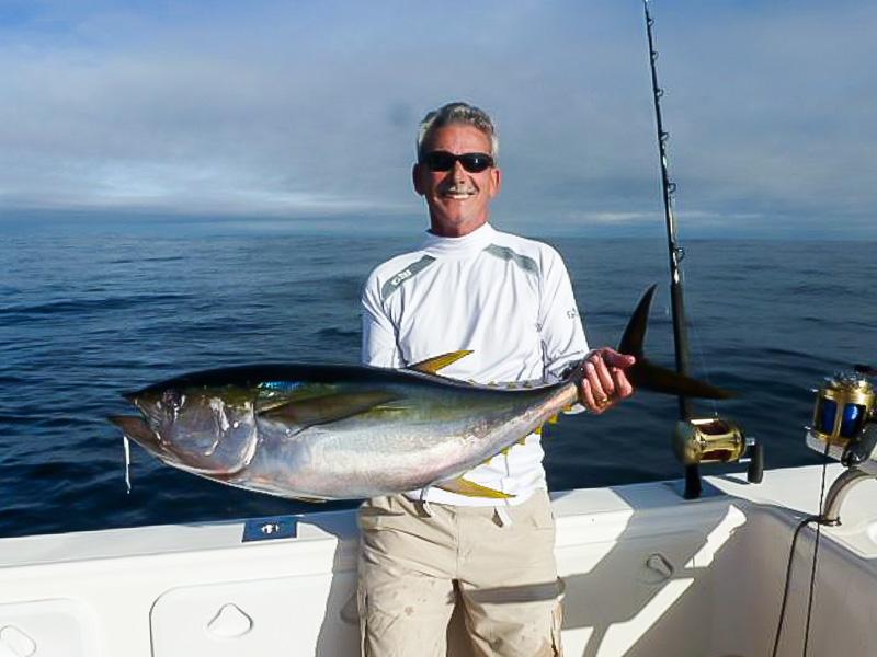 Large Yellowfin Tuna in Cape Town