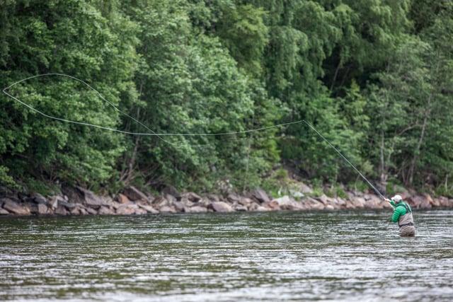Norway salmon fishing