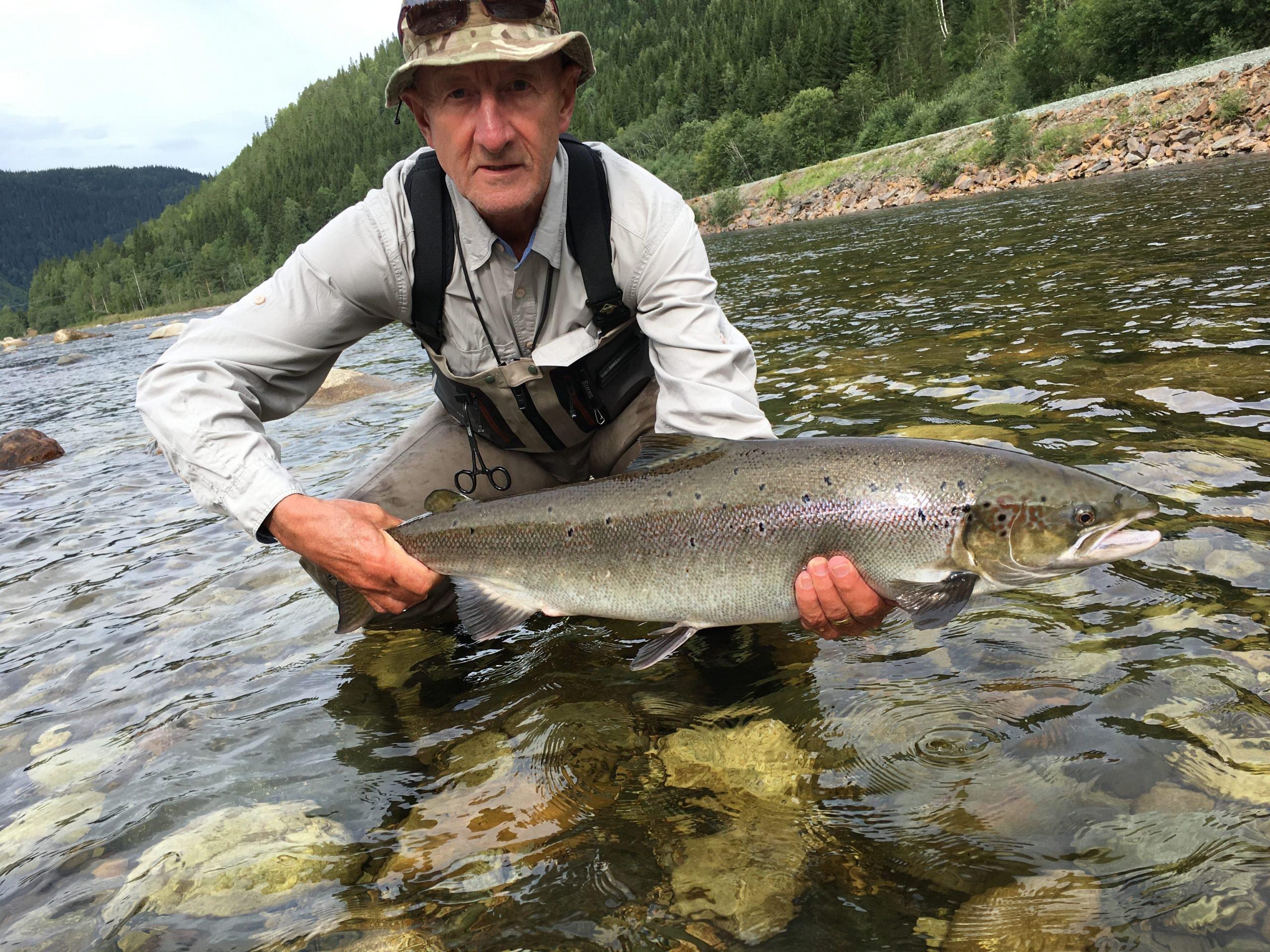 Huge Atlantic Salmon